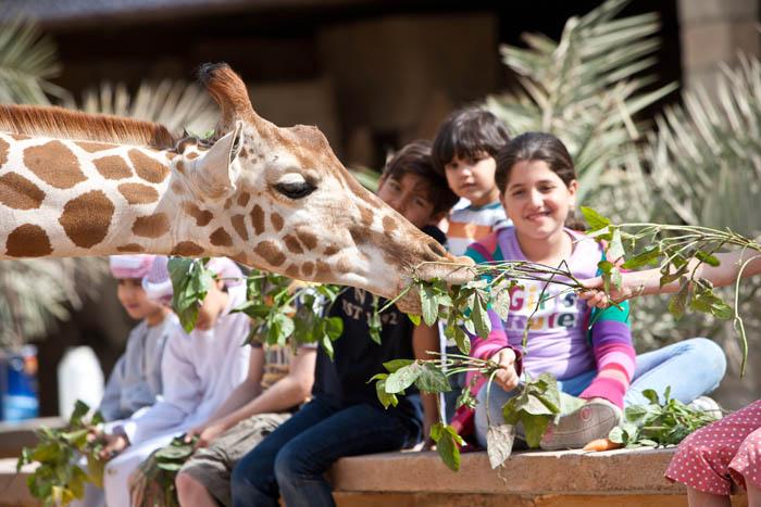 Emirates Park Zoo (26)