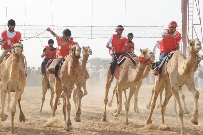 Sultan-Bin-Zayed-Heritage-Festival-2018
