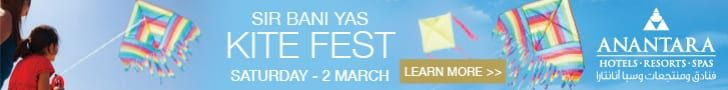 Kite Fest Banner
